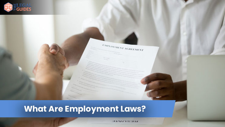 What Are Employment Laws?
