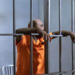 How Long Is A Life Sentence? – United States Legal Guides